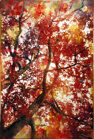 http://intranet.saintdizier.com/images/art/101-Hall-Maples30x20-Low.jpg