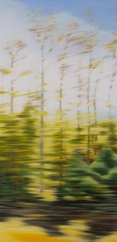 Patricia Morris - Autumn drive NB
