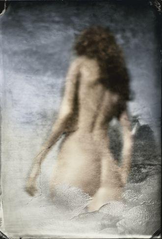 Barbara Cole - Transition