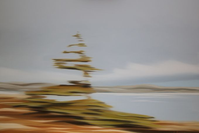 Patricia Morris - Lone Tree LN