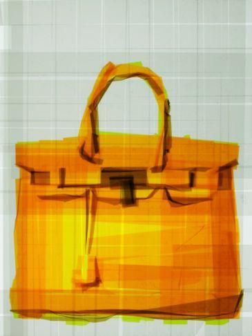 Mark Khaisman - Birkin Bag no. 10