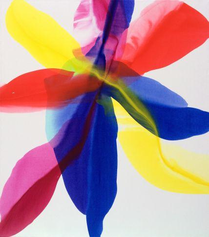 http://intranet.saintdizier.com/images/art/Blessed_VickyMcFarland.jpg