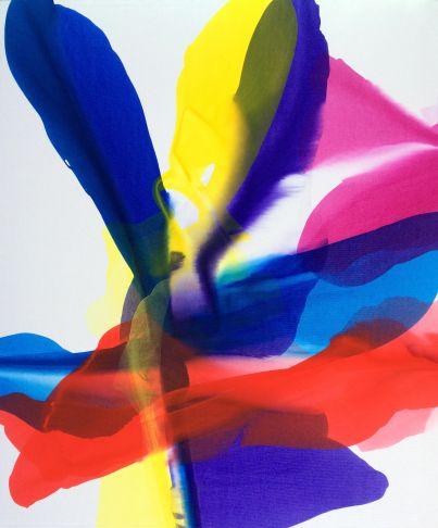 http://intranet.saintdizier.com/images/art/Blithe_VickyMcFarland.jpg
