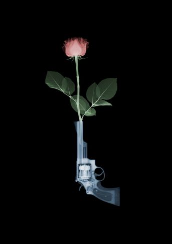 Nick Veasey - Guns and Roses