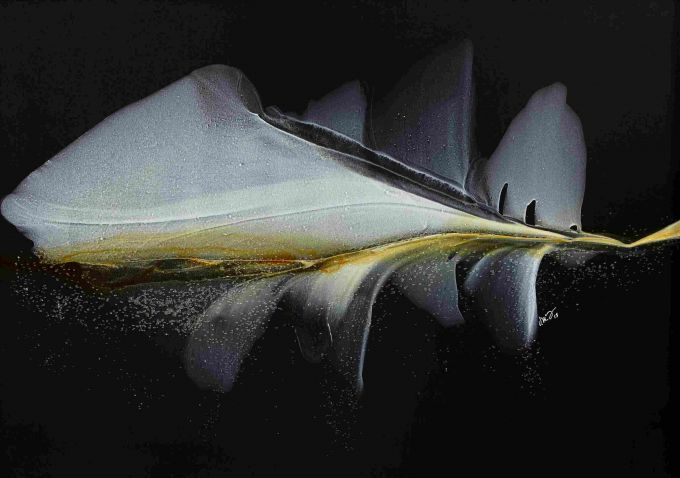 http://intranet.saintdizier.com/images/art/Neutrals-21x21RESZ.jpg