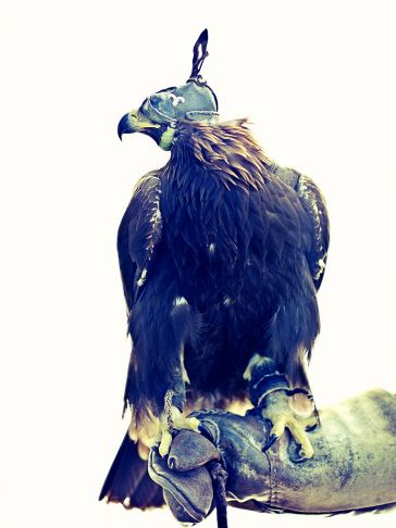 Lyle Owerko - Eagle Hunter 10 ed.1/9