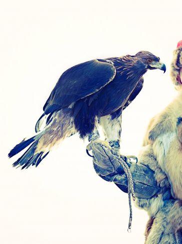 Lyle Owerko - Eagle Hunter 11