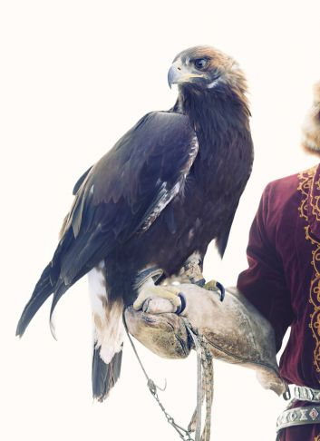 Lyle Owerko - Eagle Hunter 12 ed. 1/6