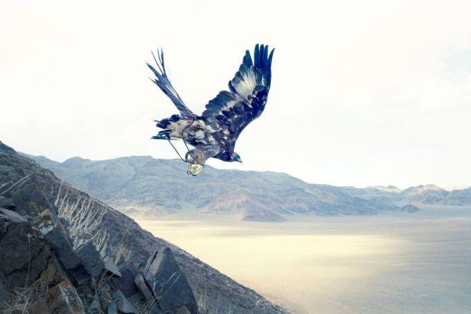 Lyle Owerko - Eagle Hunter 18