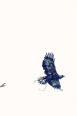 Lyle Owerko - Eagle Hunter 19