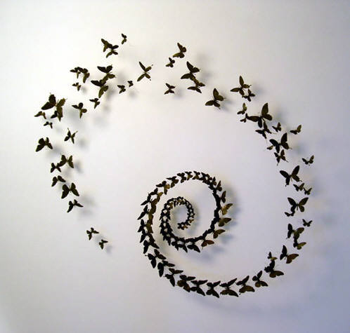 Paul Villinski - Swirl Installation