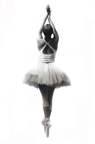 http://intranet.saintdizier.com/images/art/SAINT-DIZIER-COPY-Ballet-1---white-series--2000px_0765.jpg