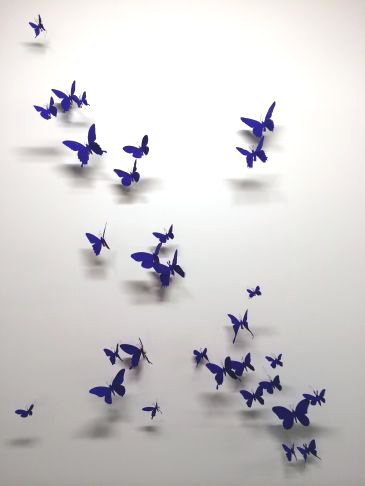 Paul Villinski - Untitled Blue Butterfly installation