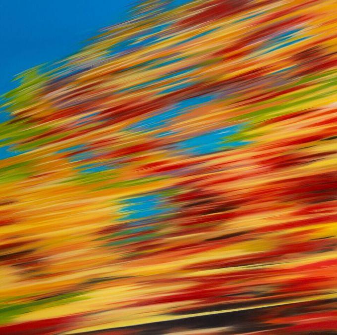 Patricia Morris - Automne - Autumn, NB