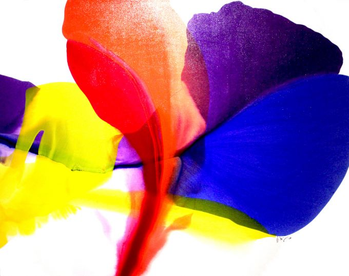 http://intranet.saintdizier.com/images/art/becauseimhappy40x52.jpg