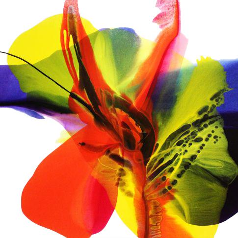 http://intranet.saintdizier.com/images/art/emerge48x48Wht.jpg
