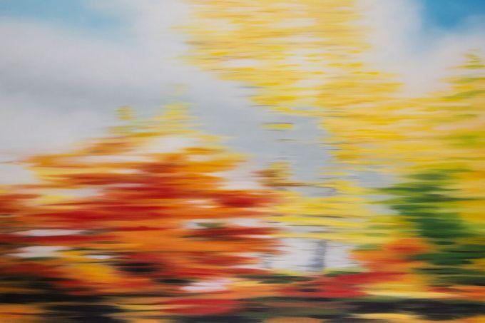 Patricia Morris - Automne - Autumn