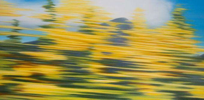 Patricia Morris - Bouleau d'automne - Autumn Birch